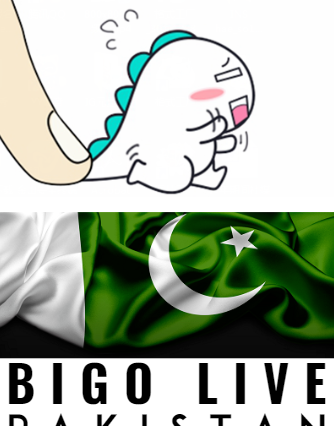 Do Bigo Live Have Any Option To Survive In Pakistan